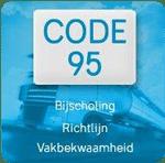chauffeur zzp (code 95)